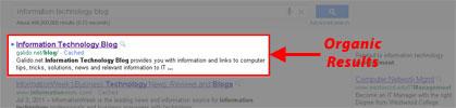 organic How to improve my website rankings